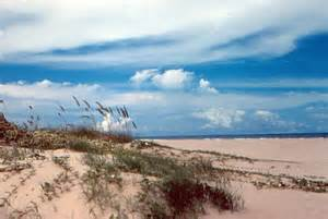 Tx To South Padre Island 12 Photos Of Beautiful Nature Spots In