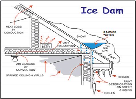 How To Prevent Roof Dams How To Remove And Prevent Dams Dams In Gutters