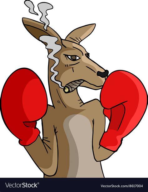 boxing kangaroo royalty  vector image vectorstock