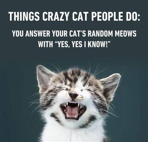 Crazy Cat Meme - crazy cat people do funny pictures quotes memes jokes