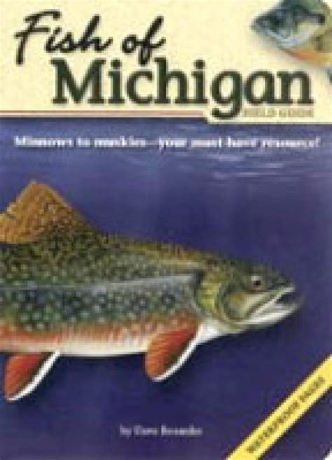 michigan wildlife a coloring field guide books fish of michigan field guide ionia conservation district