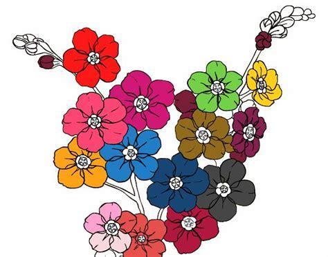 imagenes de flores multicolores dibujo de flores multicolores pintado por en dibujos net
