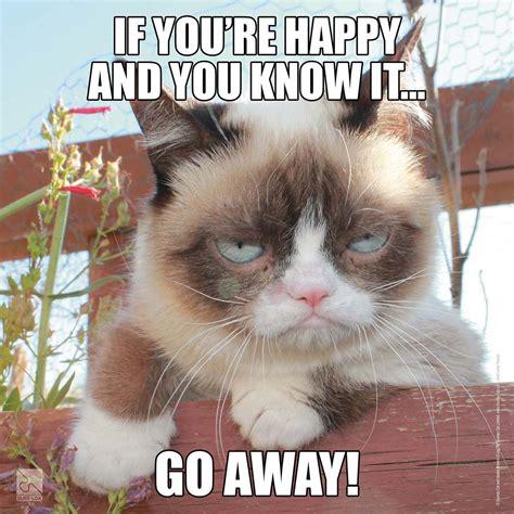 Grumpy Cat Meme Happy - grumpy cat meme happy birthday jerzy decoration