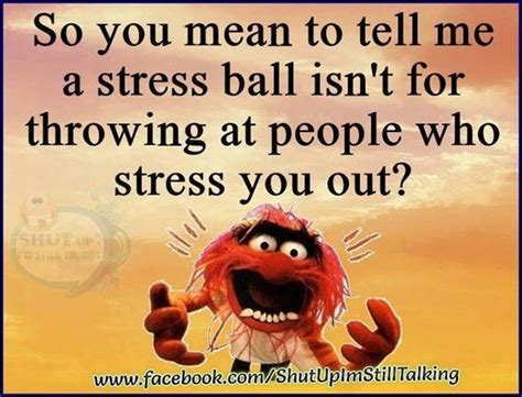 What Should Guests Throw At Me by Favs So You To Tell Me A Stress Isn T For