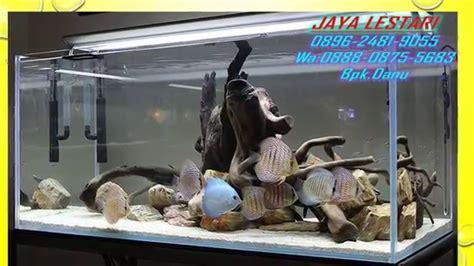 Harga Filter Aquarium by 0896 2481 9055 Tri Harga Aquarium Jatinegara Jual
