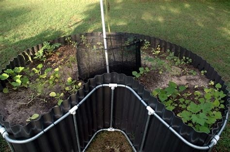 Keyhole Garden by 17 Best Images About Garden Keyhole On