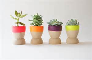 mini flower pots neon color ideas home design and interior