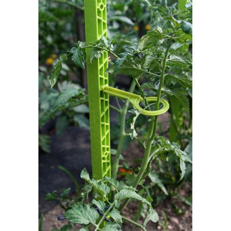 Tuteur à Tomate by Tuteur 224 Tomate En Plastique Recycl 233 1 80m Vert Anis