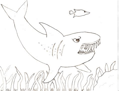 shark printable coloring pages for kids car interior design