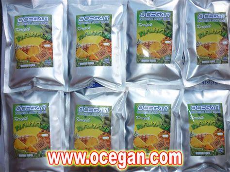 Kripik Keripik Buah Apel 100 Gr Snack Sehat Cemilan Unik keripik produksi ocegan www menone