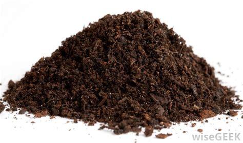 Tas Jansport Black Animal Planet list of synonyms and antonyms of the word humus