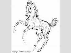RUMPKUMP RANCH Coloring Pages Paint Horse