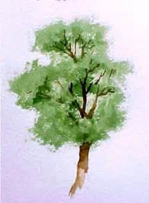 water color trees how to paint trees in watercolor susie free