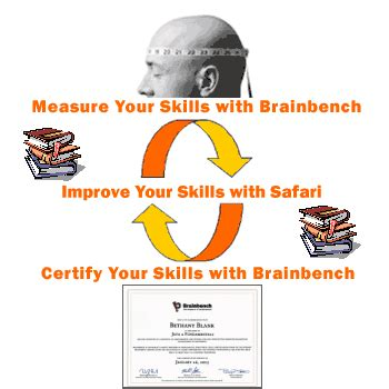 brain bench test brainbench the measure of achievement