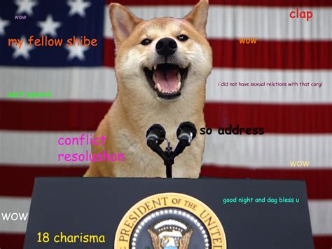 Doge Meme Shiba - you thought shiba inu dogs are cute wait till you see