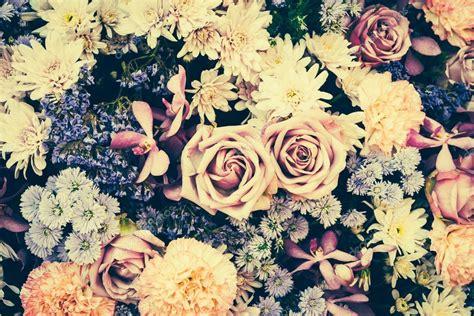 imagenes de flores vintage fondos de flores vintage fotos de stock 169 mrsiraphol