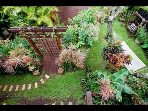 tropical garden layout design creating a beautiful tropical home garden beautiful