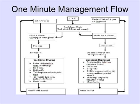 the one minute manager essence of one minute management