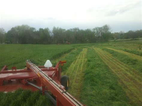 Viewing A Thread Favorite Silage by Viewing A Thread Chopping And Packing Triticale Silage