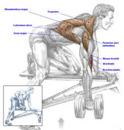 Trap Bar Bench Press Perfect Form For Dumbbell Rows Meet One Flat Jack A Men