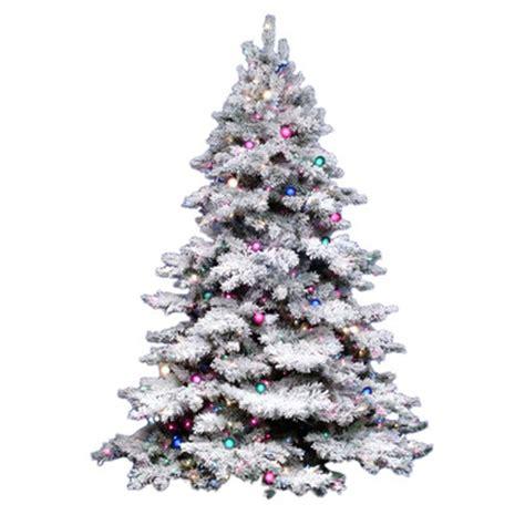 7 ft snow white snowcrest pine christmas tree all trees wayfair