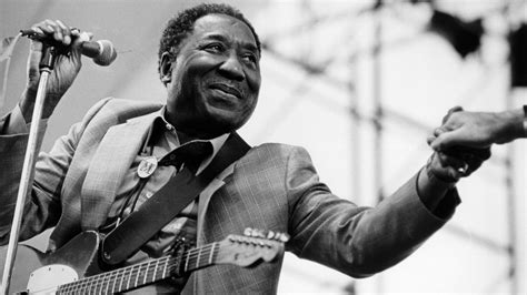 muddy waters september 2014