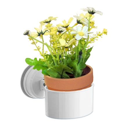 Suction Cup Planter by Wallmates 3 5 X2 Suction Cup Oval Flower Plant Holder