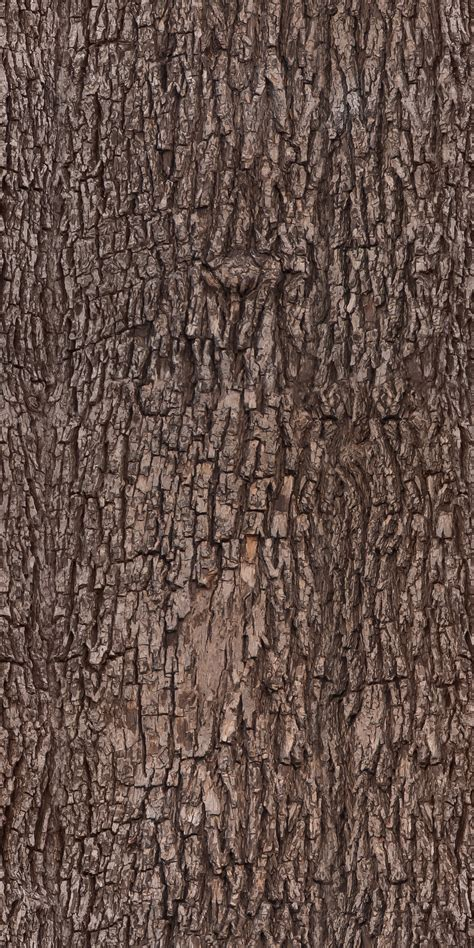 tree bark texture pattern by ivangraphics on deviantart