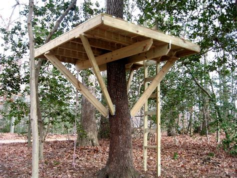 how to build house plans ultimate tree house plans fresh simple tree house plans for kids how to build a tree