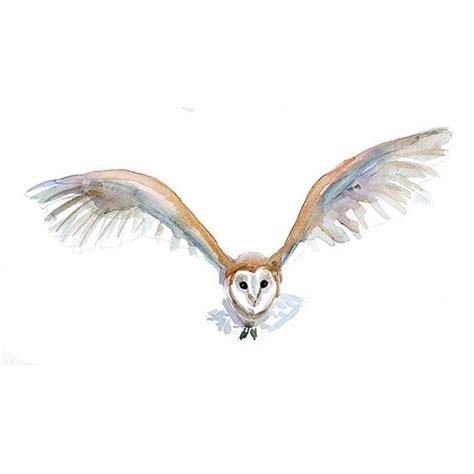 Home Decor Owls best 25 barn owl tattoos ideas on pinterest owl art