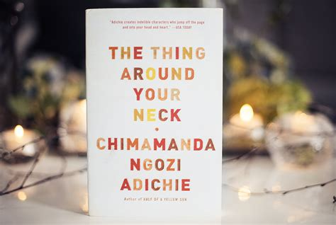 0007306210 the thing around your neck book review the thing around your neck by chimamanda