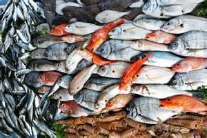 5 easy weeknight fish recipes n er gise