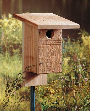 bluebird tree swallow bird house plans