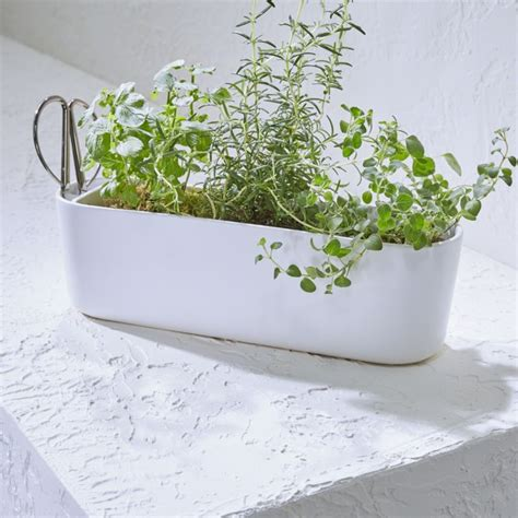 herb planter  scissors reviews crate  barrel