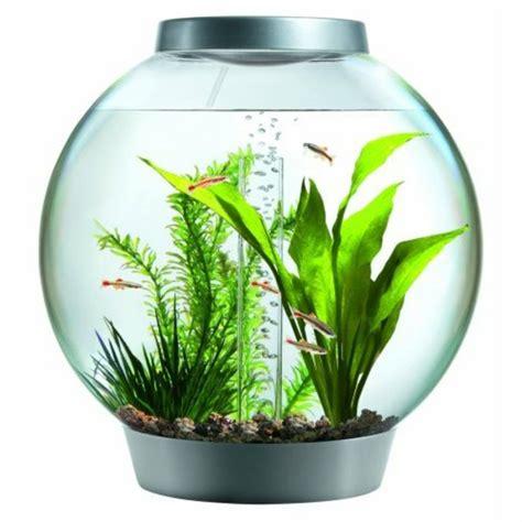 Tapisserie Décorative by Aquarium Design Poisson 28 Images Un Aquarium Design