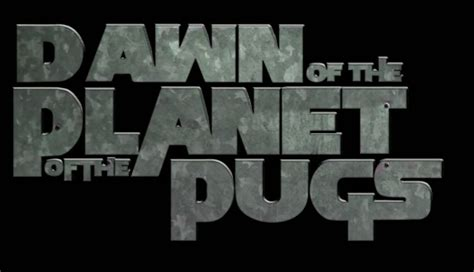 planet of the pugs of the planet of the apes pug version the poke