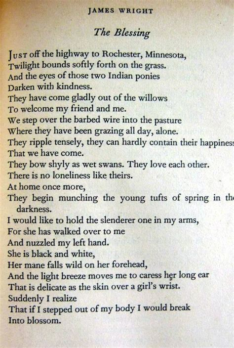themes of a blessing by james wright 14 best thanksgiving poems images on pinterest