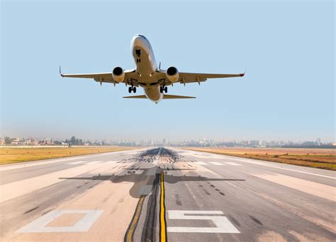 best airline flights best airlines to fly with pets flights