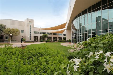 Univeristy Of Dubai Mba by Meet Our International Centres Dubai United Arab