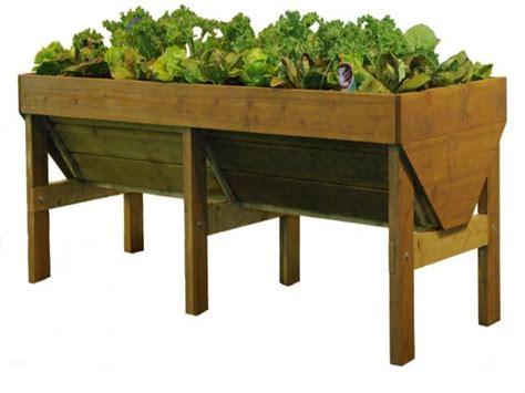 spring vegetable plants   vegtrug raised planter
