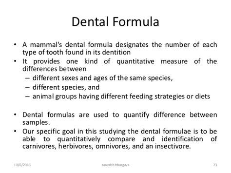 dental formula forensic odontology