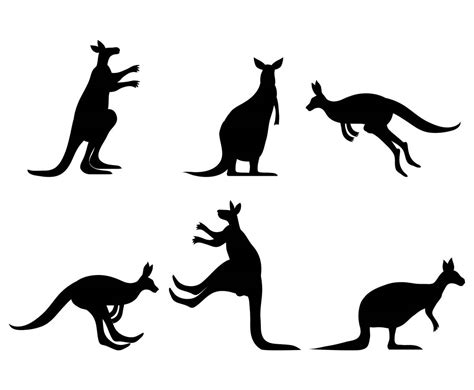 kangaroo vector set vector art graphics freevectorcom