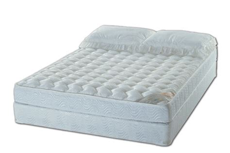 Best Waterbed Mattress Plush Top Softside Waterbed Mattress Free Flow