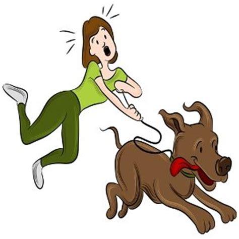 coole wandlen walking leash insurance media