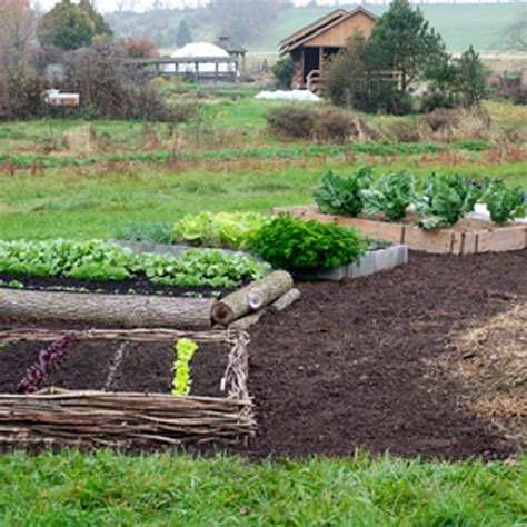 15 beautiful diy raised garden bed projects our daily ideas