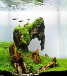nano aquascapes les 25 meilleures id 233 es de la cat 233 gorie aquascaping sur