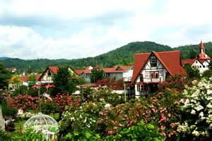 Best Small Towns In America To Visit helen ga attractive american places pinterest