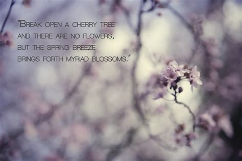 a cherry tree poem cherry blossom poems and quotes quotesgram