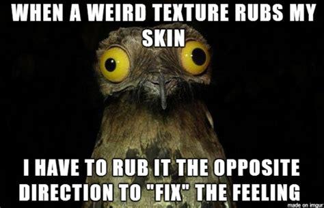 image 687084 weird stuff i do potoo know your meme
