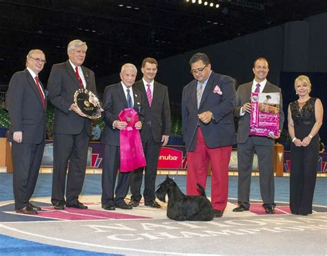 national show breed results show results 2015 akc eukanuba national chionship american kennel club